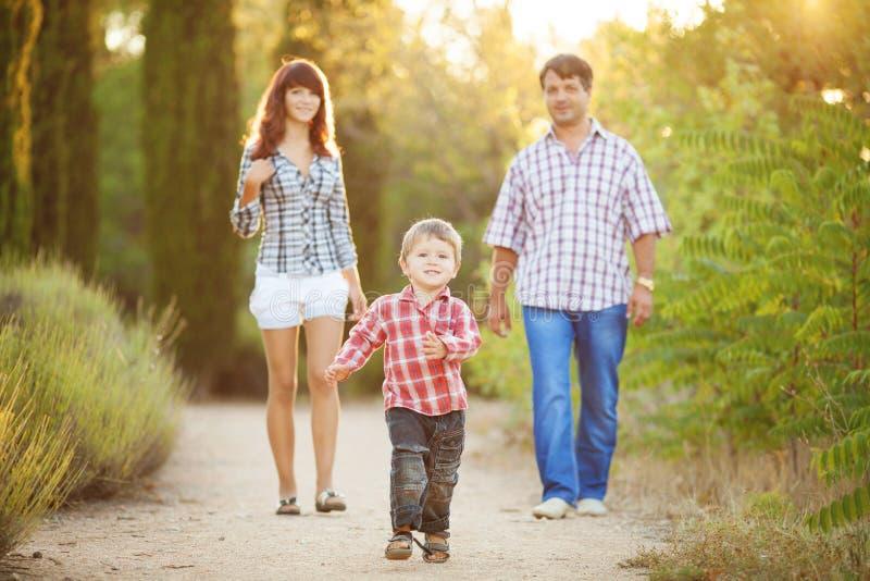 Família nova que anda no parque do verão fotos de stock