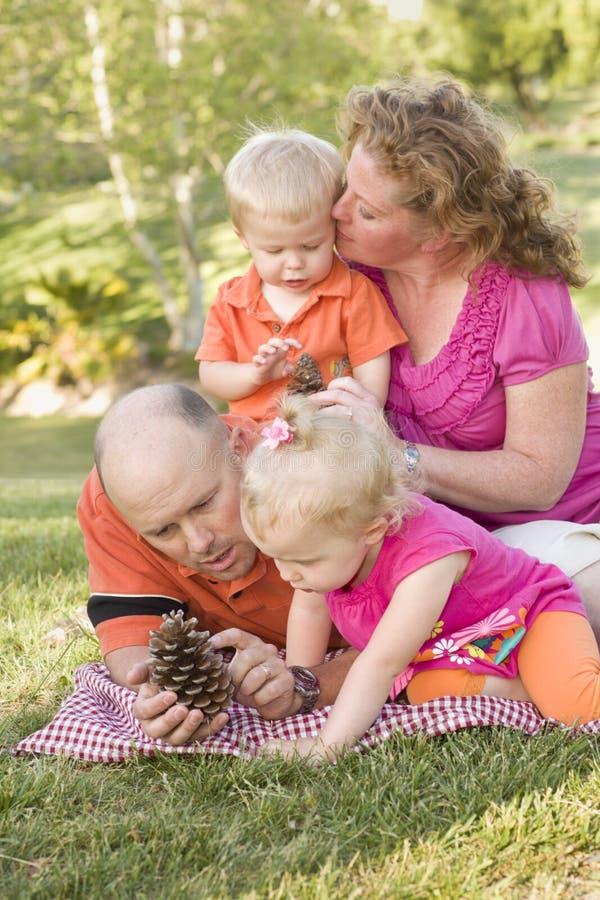 Família nova que fala sobre cones do pinho no parque foto de stock