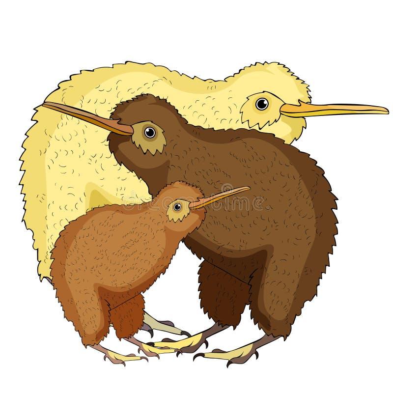 A família o pássaro do quivi é bonito Ilustração do vetor ilustração stock