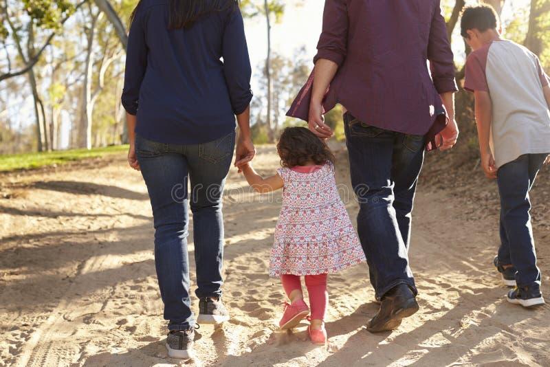 Família que anda em um trajeto rural, vista traseira da raça misturada, colheita fotos de stock royalty free