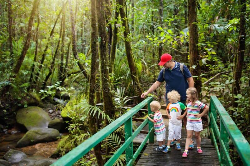 Família que caminha na selva fotos de stock