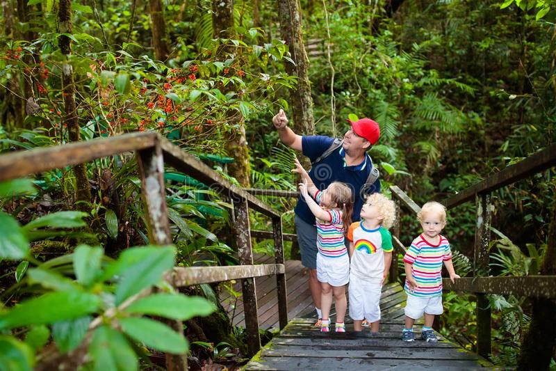 Família que caminha na selva foto de stock