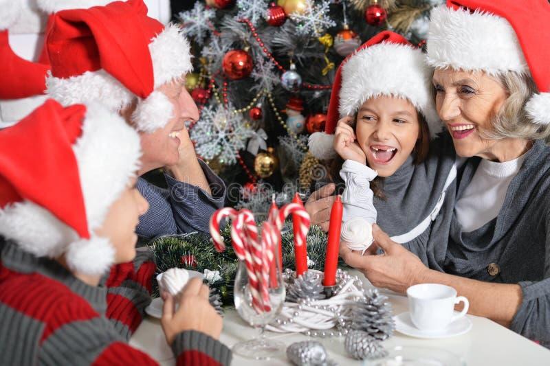 Família que comemora o Natal imagem de stock royalty free