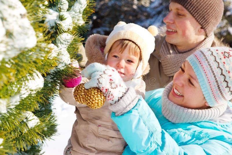 Família que decora a árvore de abeto imagem de stock royalty free
