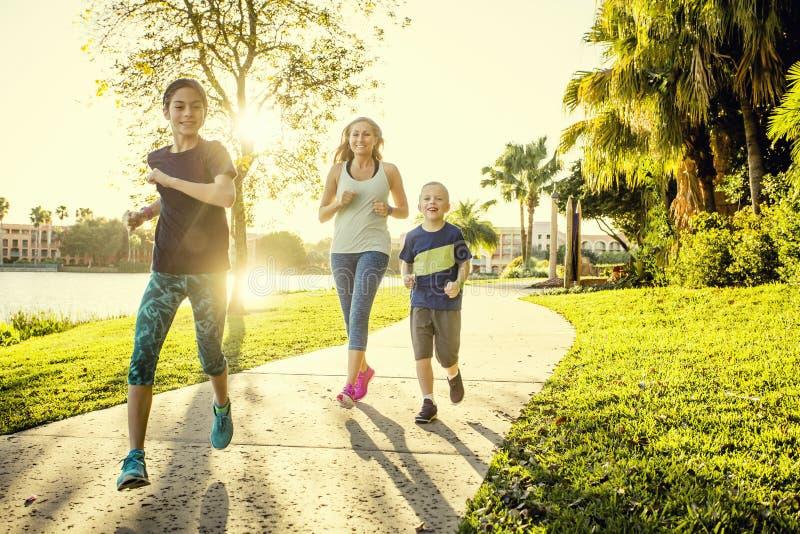 Família que exercita e que movimenta-se junto no parque imagem de stock