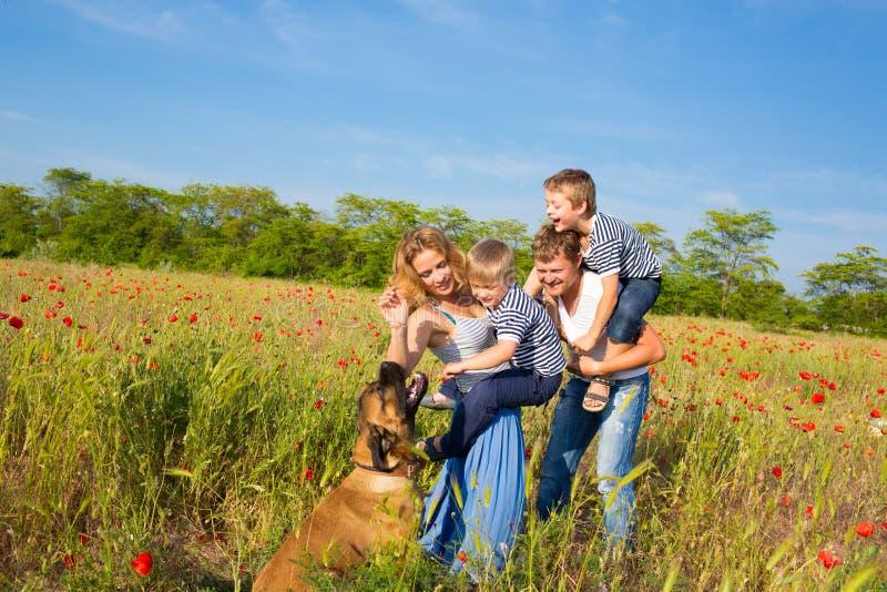 Família que joga no prado imagem de stock