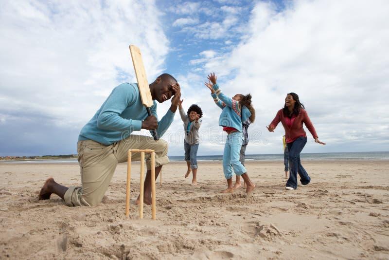 Família que joga o grilo na praia imagem de stock