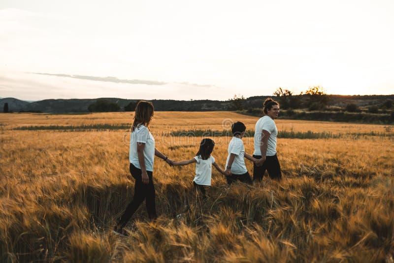Família que mantém as mãos no campo felizes foto de stock royalty free