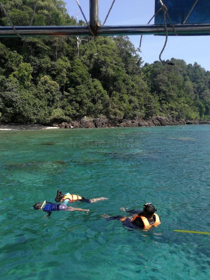 Família que mergulha na água aberta em Pulau Redang, Malásia imagem de stock