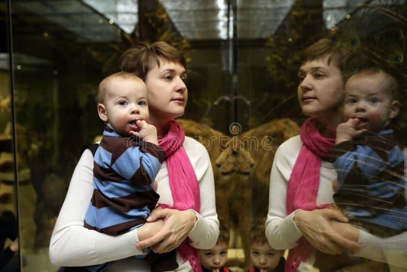 Família que olha o leão fotos de stock royalty free