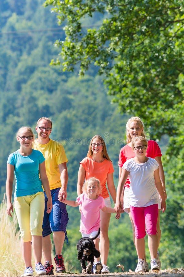 Família que tem a caminhada no trajeto nas madeiras fotografia de stock royalty free
