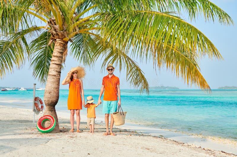 Fam?lia de tr?s na praia sob a palmeira imagem de stock royalty free