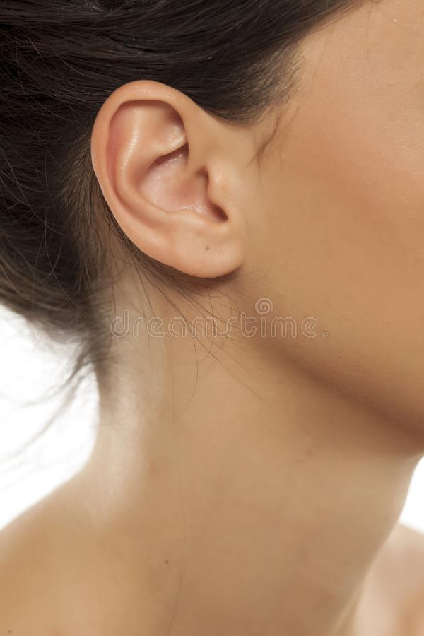 Famale ear and neck. Closeup of a woman`s ear and neck royalty free stock photography