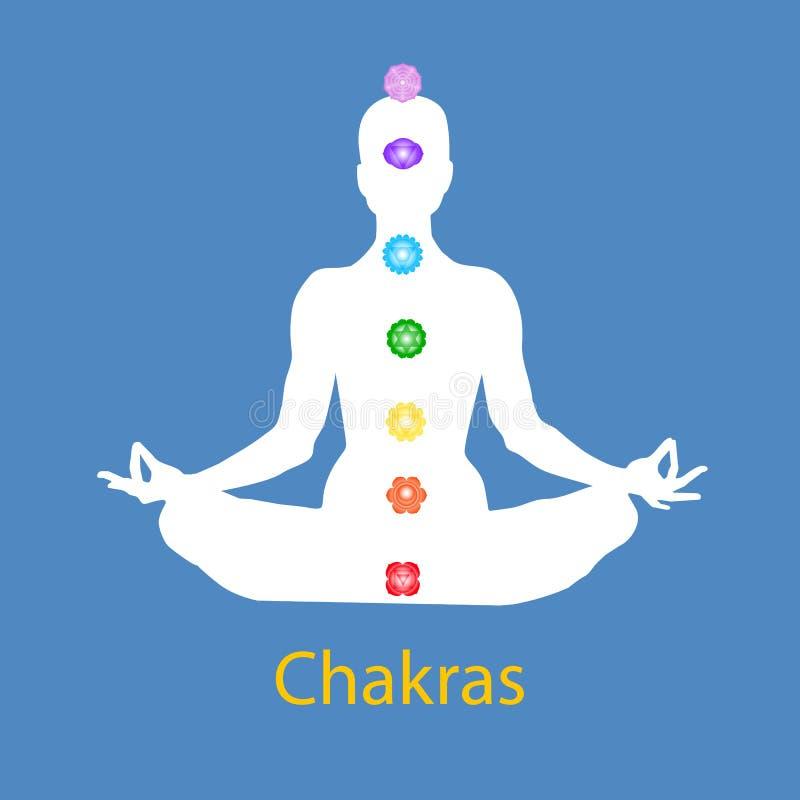 Famale kropp i lotusblommayogaasana med sju chakras på blå bakgrund Rota Sacral, sol-, hjärta, halsen, det 3rd ögat, kronachakras vektor illustrationer