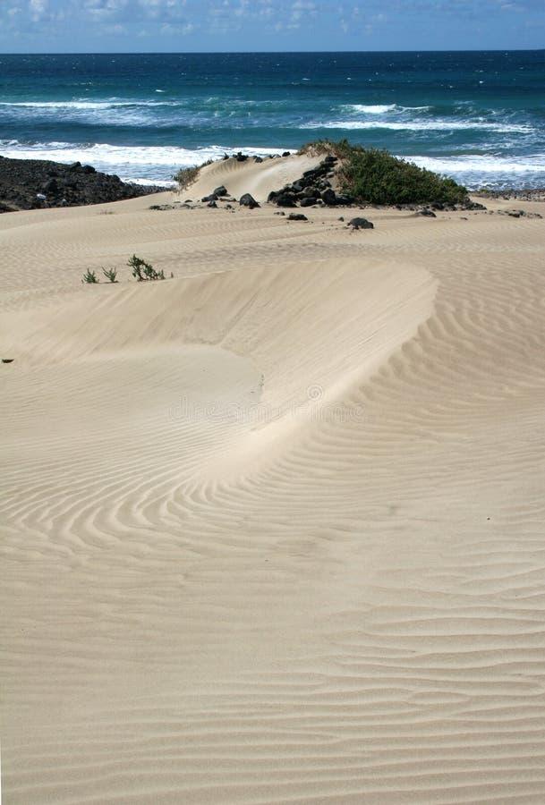 Download Famara Strand, Lanzarote stockbild. Bild von berg, inseln - 9091189