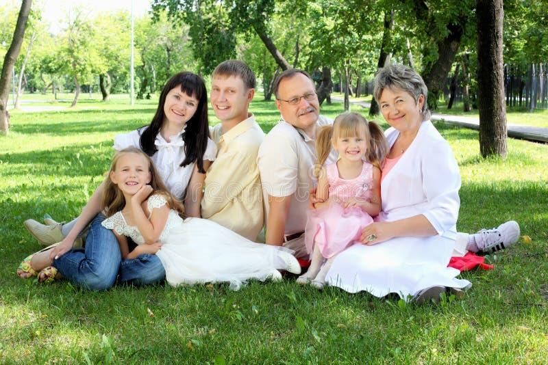 Famiglia allargata insieme nella sosta immagine stock