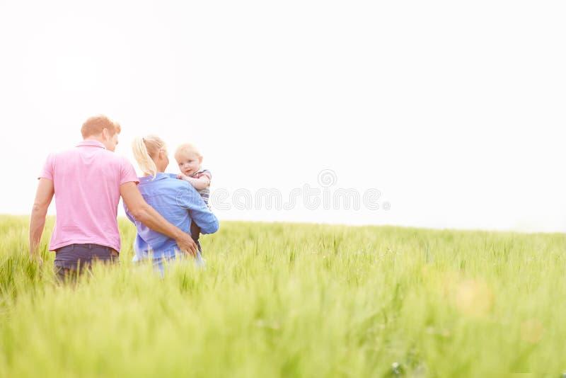 Famiglia che cammina nel campo che porta il giovane figlio del bambino fotografia stock libera da diritti