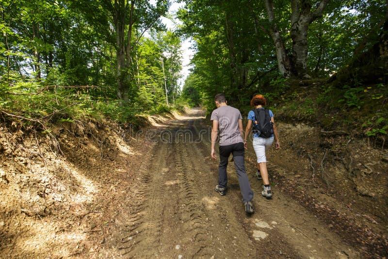 Famiglia che cammina nella foresta fotografia stock