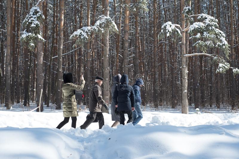 Famiglia che cammina nella neve attraverso la foresta di inverno al sole fotografie stock libere da diritti