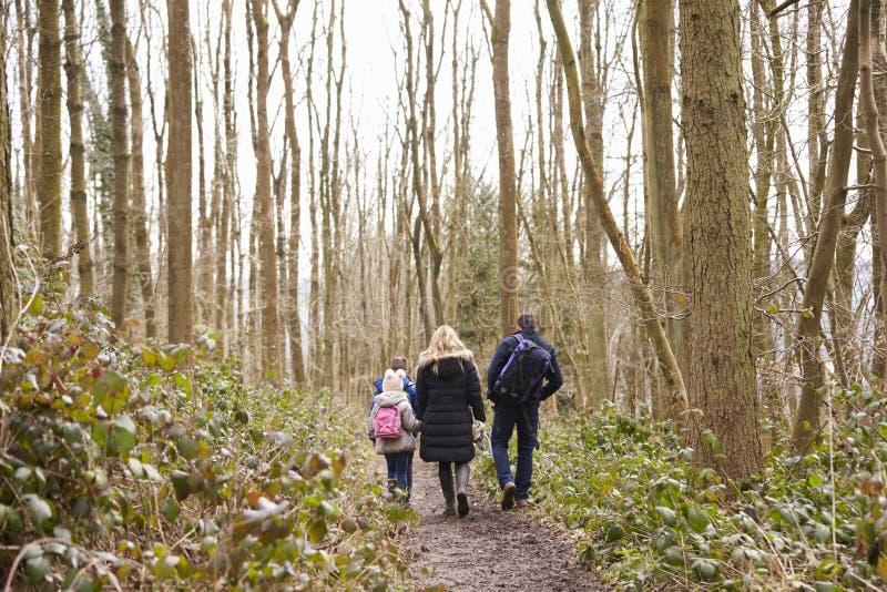 Famiglia che cammina a partire dalla macchina fotografica attraverso un legno immagini stock libere da diritti