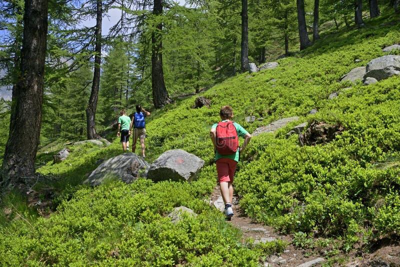 Famiglia che cammina in un percorso in montagna fotografia stock libera da diritti