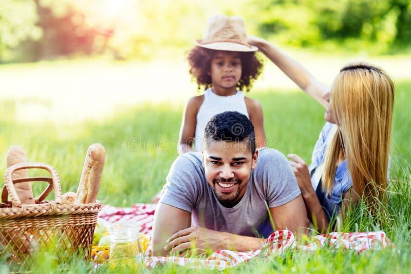 Famiglia che gode dell'uscita di picnic fotografia stock