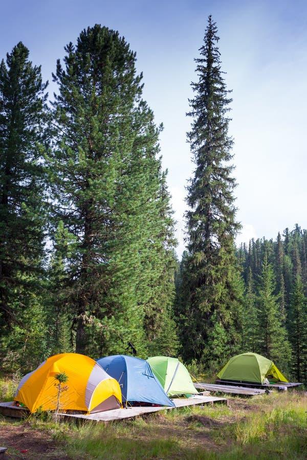 Famiglia che gode della vacanza in campeggio in campagna immagine stock