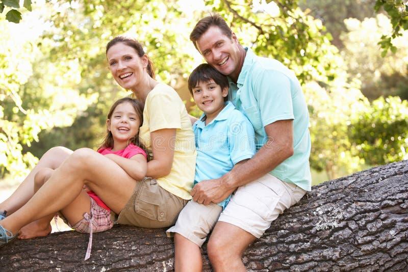 Famiglia che si siede sull'albero in sosta immagini stock