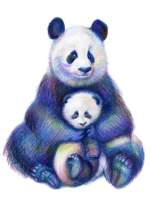 Famiglia colorata degli orsi di panda dell'arcobaleno del disegno di matite illustrazione di stock
