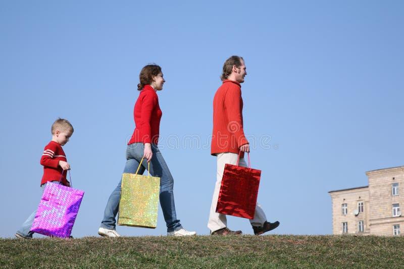 Famiglia con i grandi sacchetti immagine stock libera da diritti