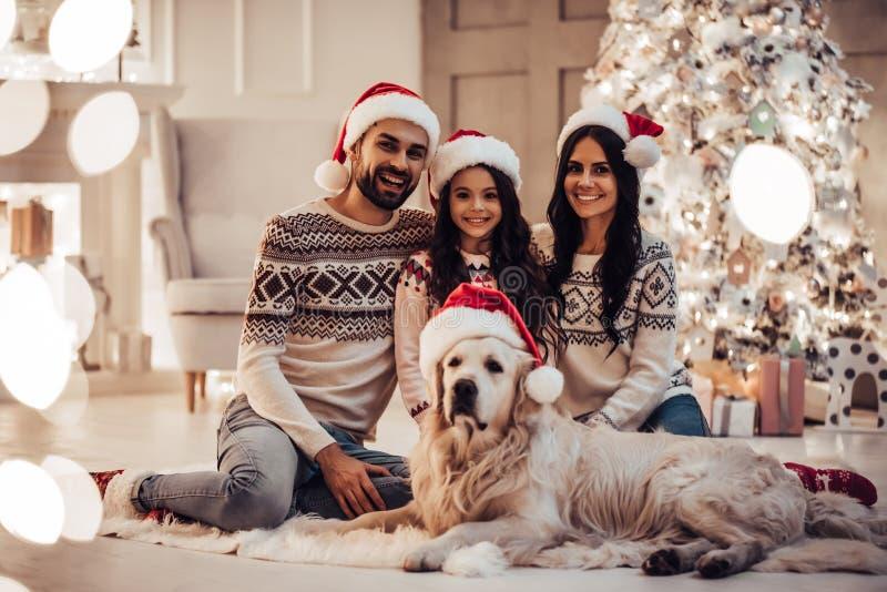 Famiglia con il cane sul ` s EVE del nuovo anno fotografia stock libera da diritti