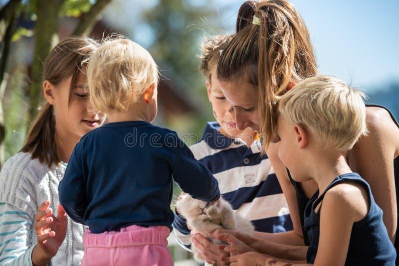 Famiglia con il coniglio dell'animale domestico immagini stock libere da diritti