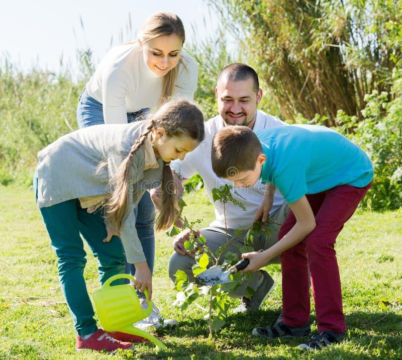 """famiglia del ¿ del ï"""" che pianta albero all'aperto fotografie stock libere da diritti"""