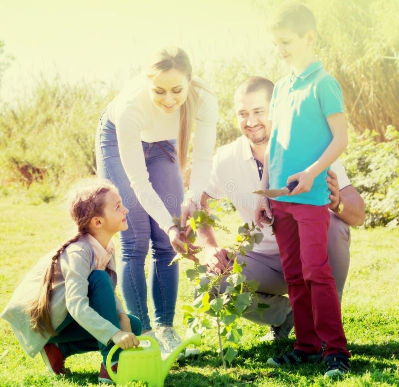 """famiglia del ¿ del ï"""" che pianta albero all'aperto fotografia stock libera da diritti"""