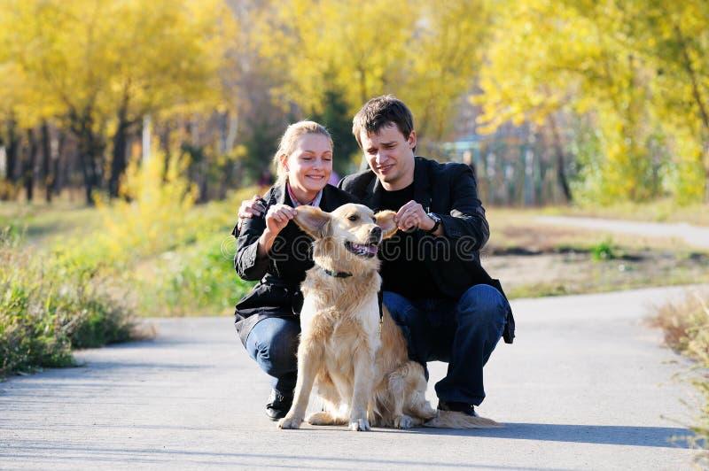 Famiglia del Labrador fotografia stock