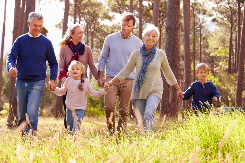 Famiglia di diverse generazioni felice che cammina nella campagna fotografia stock libera da diritti