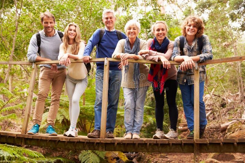 Famiglia di diverse generazioni sul ponte di legno in foresta, ritratto immagini stock libere da diritti