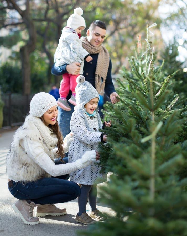 Download Famiglia Di Quattro Che Sceglie X-albero Al Mercato Fotografia Stock - Immagine di abete, acquisto: 56877686