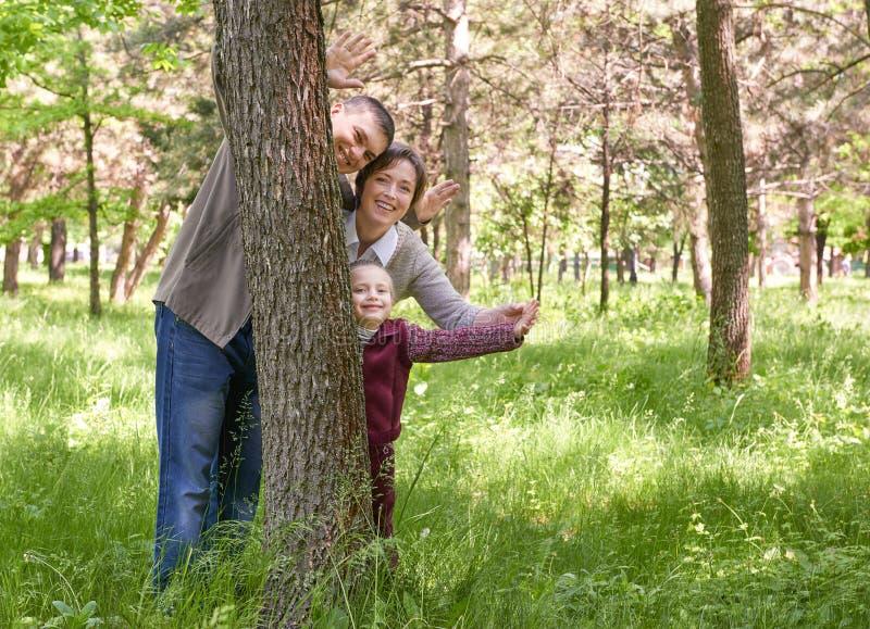 Famiglia e bambino felici nel parco di estate La gente che si nasconde e che gioca dietro un albero Bello paesaggio con gli alber immagini stock