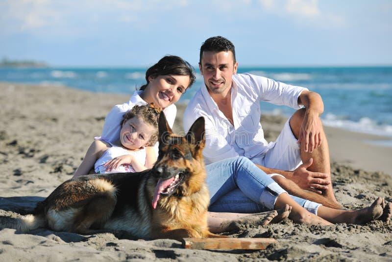 Famiglia felice che gioca con il cane sulla spiaggia fotografia stock libera da diritti
