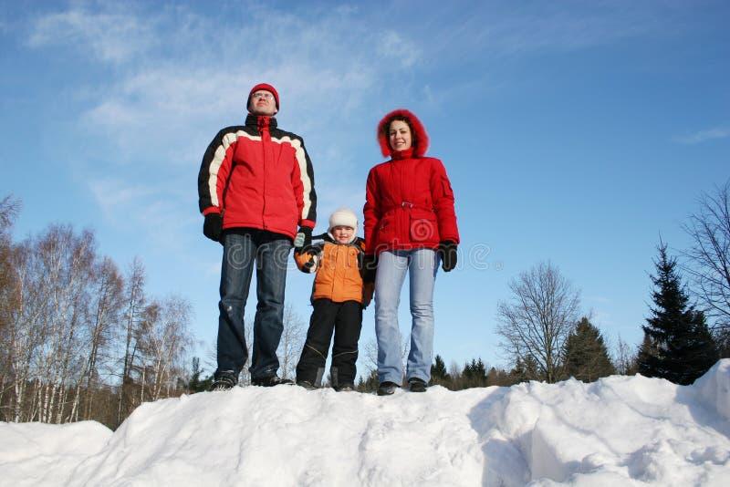 Famiglia in inverno immagini stock