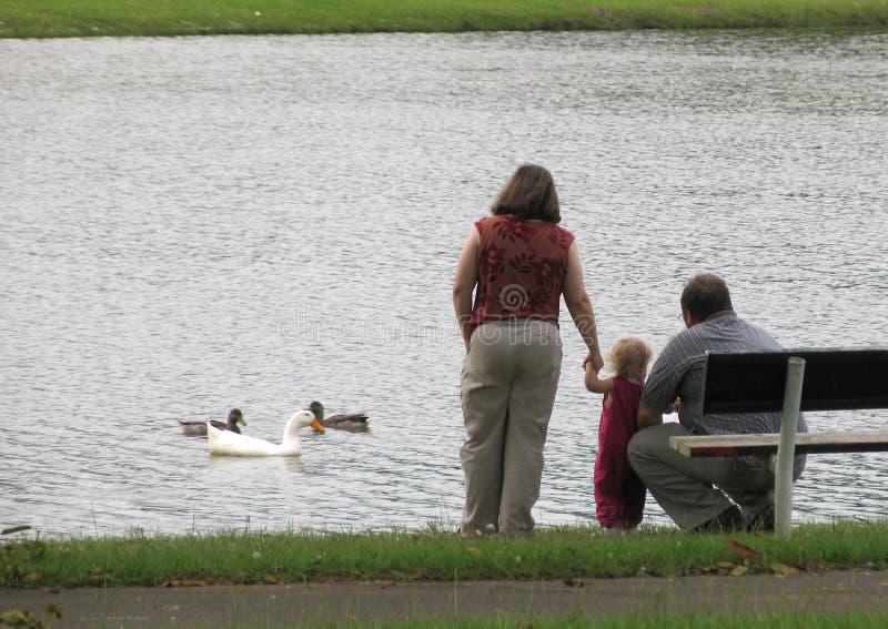 Famiglia nel lago fotografia stock