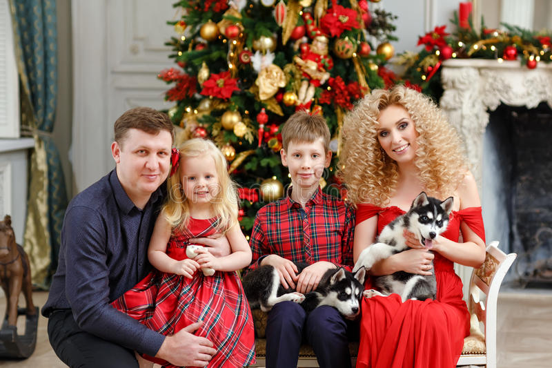Famiglia nel rosso con i cuccioli del husky che si siedono sul Natale indietro fotografia stock libera da diritti
