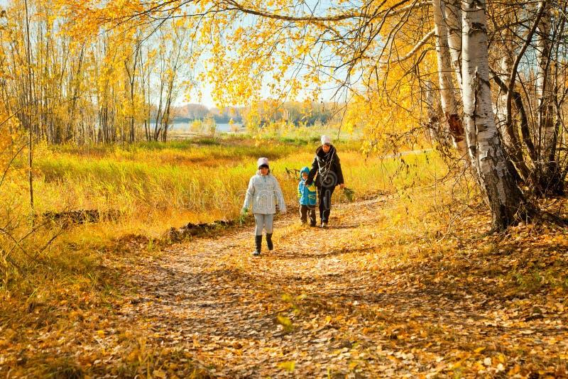 Famiglia nella foresta di autunno fotografie stock libere da diritti