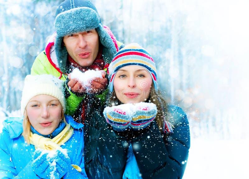 Famiglia nella sosta di inverno fotografia stock