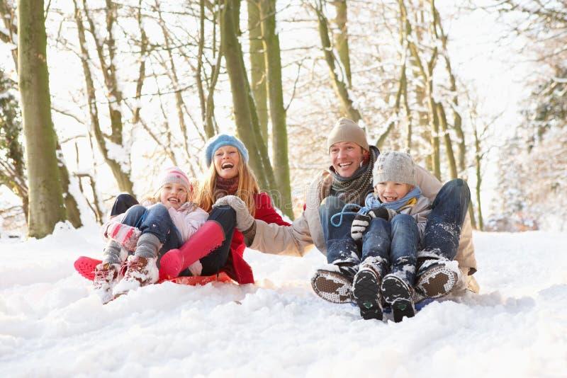 Famiglia Sledging attraverso il terreno boscoso dello Snowy fotografia stock libera da diritti