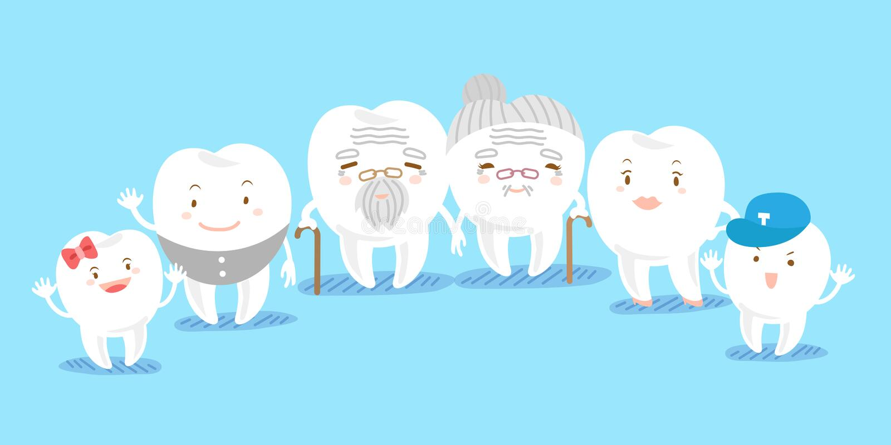 Famiglia sveglia del dente del fumetto illustrazione vettoriale