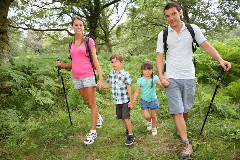 Famiglia un giorno di trekking in foresta fotografia stock libera da diritti