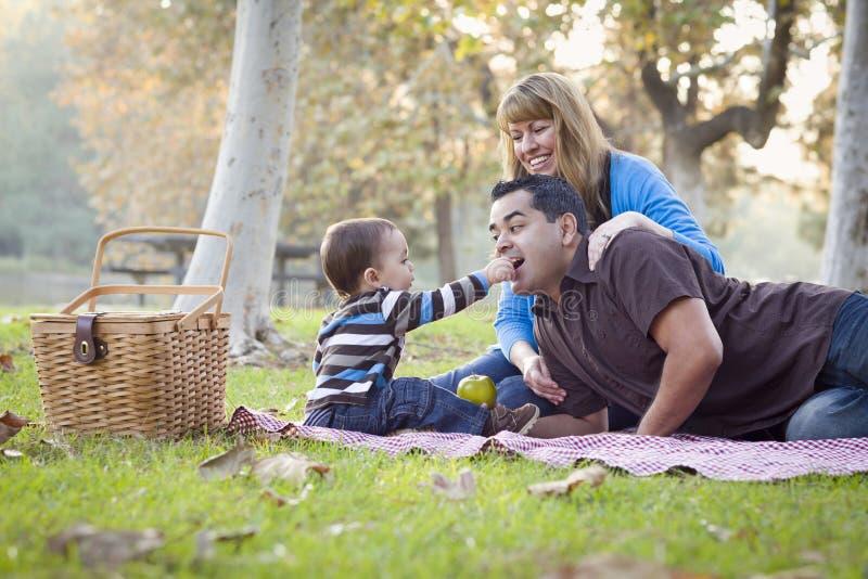 Familia étnica de la raza mixta que tiene comida campestre en el parque imágenes de archivo libres de regalías