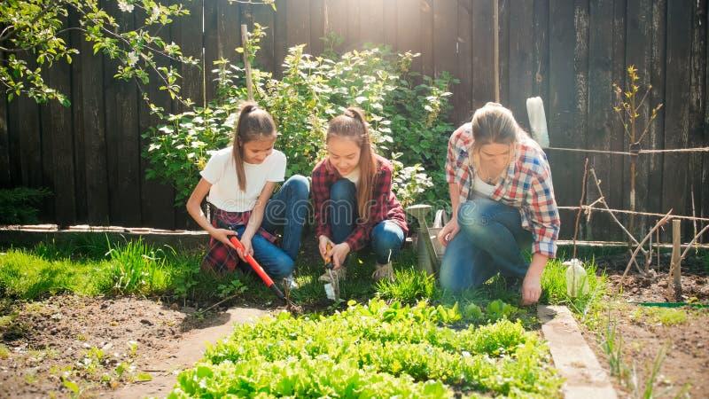 Familia alegre feliz que trabaja en el jardín en el día soleado brillante fotos de archivo libres de regalías